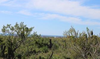 Foto de terreno habitacional en venta en lote parcela 2185 7 1/18 , el pescadero, la paz, baja california sur, 11209631 No. 01