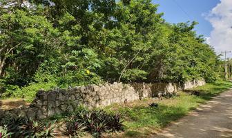 Foto de terreno habitacional en venta en luis donaldo colosio , supermanzana 52, benito juárez, quintana roo, 16881977 No. 01