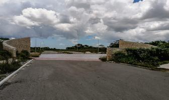 Foto de terreno habitacional en venta en macrolote de 22, 382m2 con servicios, en el desarrollo la empedrada cerca de la zona metropolitana d , conkal, conkal, yucatán, 0 No. 04