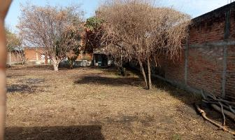 Foto de terreno habitacional en venta en manzano 4 , paso de la comunidad, ocotlán, jalisco, 11871459 No. 01
