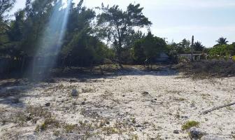 Foto de terreno habitacional en venta en maria irene supermanzana 12 , puerto morelos, benito juárez, quintana roo, 12340544 No. 01