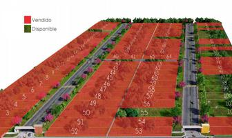 Foto de terreno habitacional en venta en  , merida centro, mérida, yucatán, 10897242 No. 01