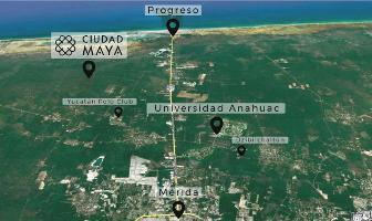 Foto de terreno habitacional en venta en  , merida centro, mérida, yucatán, 13828429 No. 01