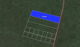 Foto de terreno habitacional en venta en  , mérida, mérida, yucatán, 3512752 No. 01