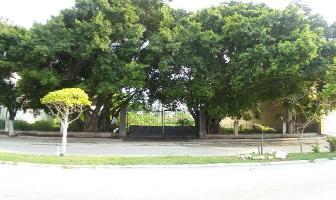 Foto de terreno habitacional en renta en  , miami, carmen, campeche, 11782352 No. 01