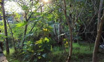 Foto de terreno habitacional en venta en miguel hidalgo , granjas lomas de guadalupe, cuautitlán izcalli, méxico, 6566762 No. 01