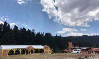 Foto de terreno habitacional en venta en mineral del monte 200, mineral del monte centro, mineral del monte, hidalgo, 0 No. 01