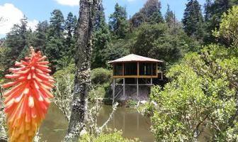 Foto de terreno habitacional en venta en mineral del monte 900, privada del bosque, pachuca de soto, hidalgo, 12015443 No. 01