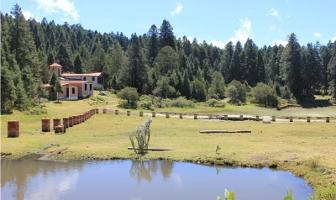 Foto de terreno habitacional en venta en  , mineral del monte centro, mineral del monte, hidalgo, 0 No. 01