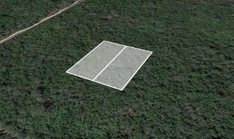 Foto de terreno habitacional en venta en  , misnebalam, progreso, yucatán, 11779139 No. 01