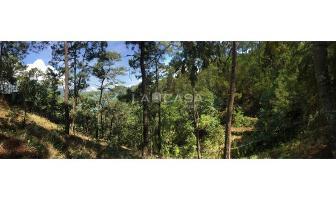 Foto de terreno habitacional en venta en  , monte alto, valle de bravo, méxico, 5414107 No. 01