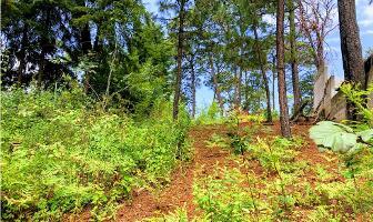 Foto de terreno habitacional en venta en  , monte alto, valle de bravo, méxico, 8954139 No. 02
