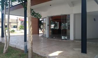 Foto de local en renta en  , montejo, mérida, yucatán, 14027558 No. 01