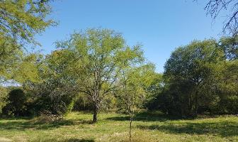 Foto de terreno habitacional en venta en  , montemorelos centro, montemorelos, nuevo león, 11761212 No. 01