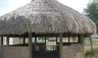 Foto de terreno habitacional en venta en s/n , agua nueva, saltillo, coahuila de zaragoza, 3995003 No. 02