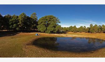 Foto de terreno habitacional en venta en np np, llano grande, durango, durango, 17399563 No. 01