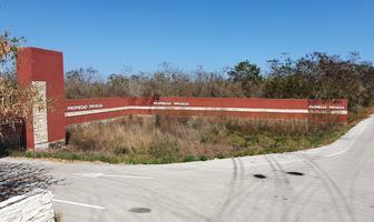 Foto de terreno habitacional en venta en nueva carretera mérida – conkal – chicxulub puerto , san francisco de asís, conkal, yucatán, 0 No. 01