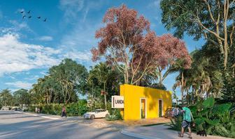 Foto de terreno habitacional en venta en nuevo ebula , izamal, izamal, yucatán, 0 No. 01
