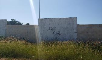 Foto de terreno industrial en venta en dzitya , dzitya, mérida, yucatán, 6149953 No. 01
