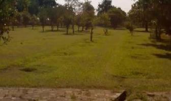 Foto de terreno habitacional en renta en  , oacalco, yautepec, morelos, 2721037 No. 01