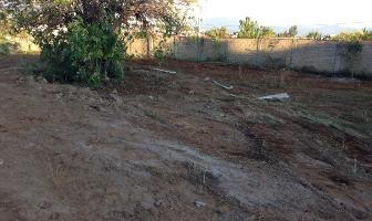 Foto de terreno habitacional en venta en  , ocotepec, cuernavaca, morelos, 2595524 No. 03