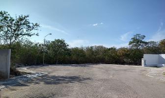 Foto de terreno habitacional en venta en olmos , komchen, mérida, yucatán, 0 No. 01