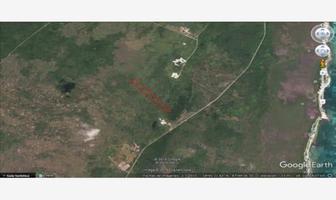 Foto de terreno habitacional en venta en ooo xx, mahahual, othón p. blanco, quintana roo, 16076326 No. 01