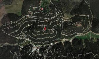 Foto de terreno habitacional en venta en oyameles 00, arteaga centro, arteaga, coahuila de zaragoza, 6391752 No. 01