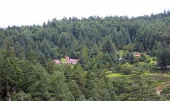 Foto de terreno habitacional en venta en  , pachuca 88, pachuca de soto, hidalgo, 8954598 No. 01
