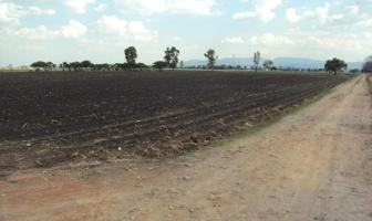 Foto de terreno comercial en venta en palo alto , la presa (san antonio), el marqués, querétaro, 0 No. 01