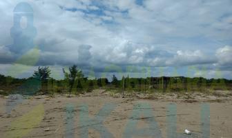 Foto de terreno habitacional en venta en  , palo blanco, tamiahua, veracruz de ignacio de la llave, 0 No. 01