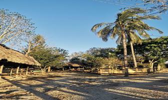 Foto de rancho en venta en  , panaba, panabá, yucatán, 14654264 No. 01