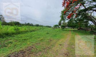 Foto de terreno habitacional en venta en  , panuco centro, pánuco, veracruz de ignacio de la llave, 0 No. 01