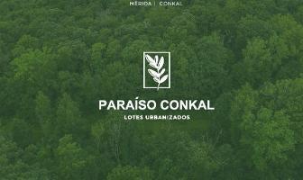Foto de terreno habitacional en venta en paraíso conkal , conkal, conkal, yucatán, 0 No. 01