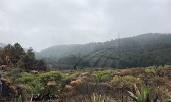 Foto de terreno habitacional en venta en paraje dondetza , santa cruz ayotuxco, huixquilucan, méxico, 10896188 No. 01