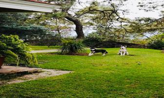 Foto de casa en venta en parota , pinar de la venta, zapopan, jalisco, 16975568 No. 01