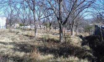 Foto de terreno habitacional en venta en  , parras de la fuente centro, parras, coahuila de zaragoza, 4737760 No. 01