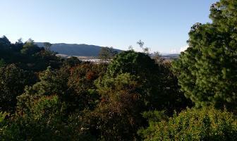 Foto de casa en venta en paseo de la rosa morada 11 , la soledad, zapopan, jalisco, 12112338 No. 02