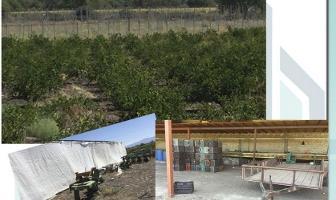 Foto de terreno habitacional en venta en pendiente , santa cruz de las flores, tlajomulco de zúñiga, jalisco, 11076024 No. 01