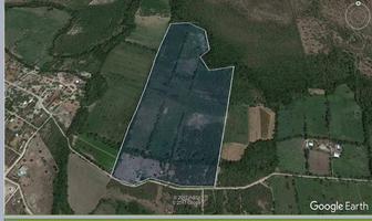 Foto de terreno habitacional en venta en  , pesquería, pesquería, nuevo león, 7684034 No. 01