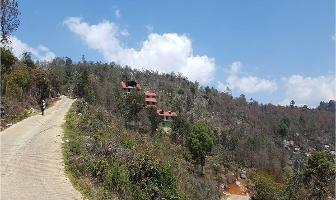 Foto de terreno comercial en venta en piedra cola de pato , del santuario, san cristóbal de las casas, chiapas, 14209905 No. 01