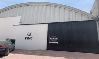 Foto de bodega en renta en pino 46, el carmen, el marqués, querétaro, 0 No. 01