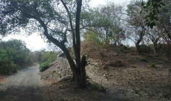 Foto de terreno habitacional en venta en primavera , chivato, villa de álvarez, colima, 0 No. 01