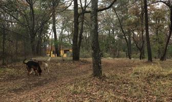 Foto de terreno habitacional en venta en principal sin numero, santa catarina, villa del carbón, méxico, 5918308 No. 01