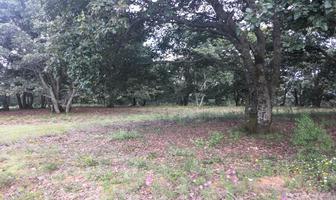 Foto de terreno habitacional en venta en principal sin numero, villa del carbón, villa del carbón, méxico, 5906471 No. 01