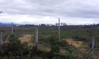 Foto de terreno habitacional en venta en privada de colón 3a. sección paraje el zacaton lote 2 s/n , san pablo etla, san pablo etla, oaxaca, 0 No. 01