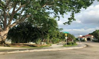 Foto de terreno habitacional en venta en privada oasis del norte , temozon norte, mérida, yucatán, 0 No. 01