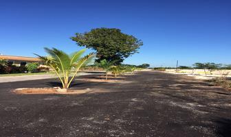 Foto de terreno habitacional en venta en privada villas conkal , conkal, conkal, yucatán, 0 No. 01