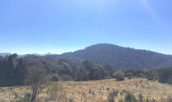 Foto de terreno habitacional en venta en  , pueblo nuevo, mineral del monte, hidalgo, 3408537 No. 01