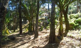 Foto de terreno habitacional en venta en pueblo s/n. , valle de bravo, valle de bravo, méxico, 6212564 No. 01
